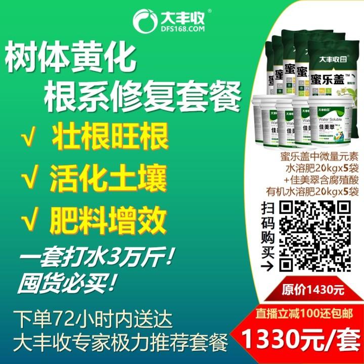 树体黄化修复套餐 (根系损伤)(1) 1套