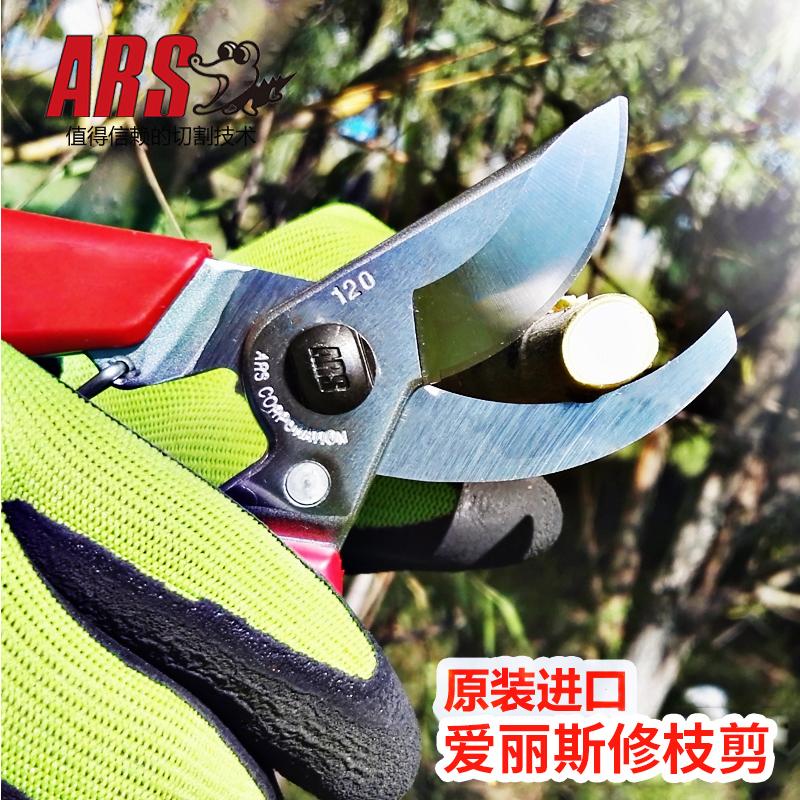 日本进口 爱丽斯ARS-修枝剪 120DX 120DX*1支