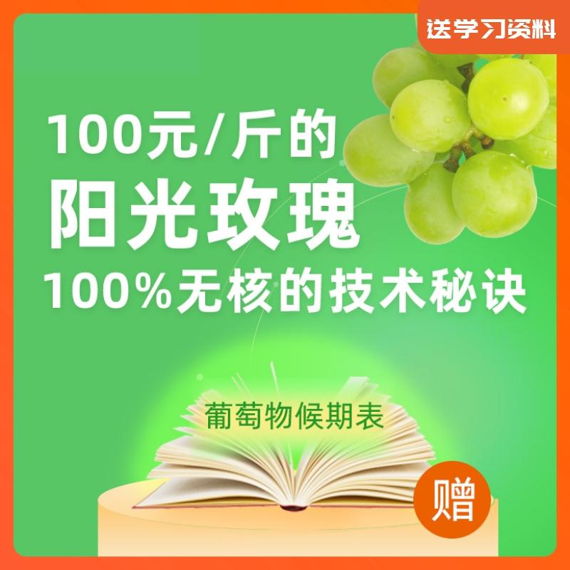 【天天学农】阳光玫瑰100% 无核的技术秘诀 1*1套*1套