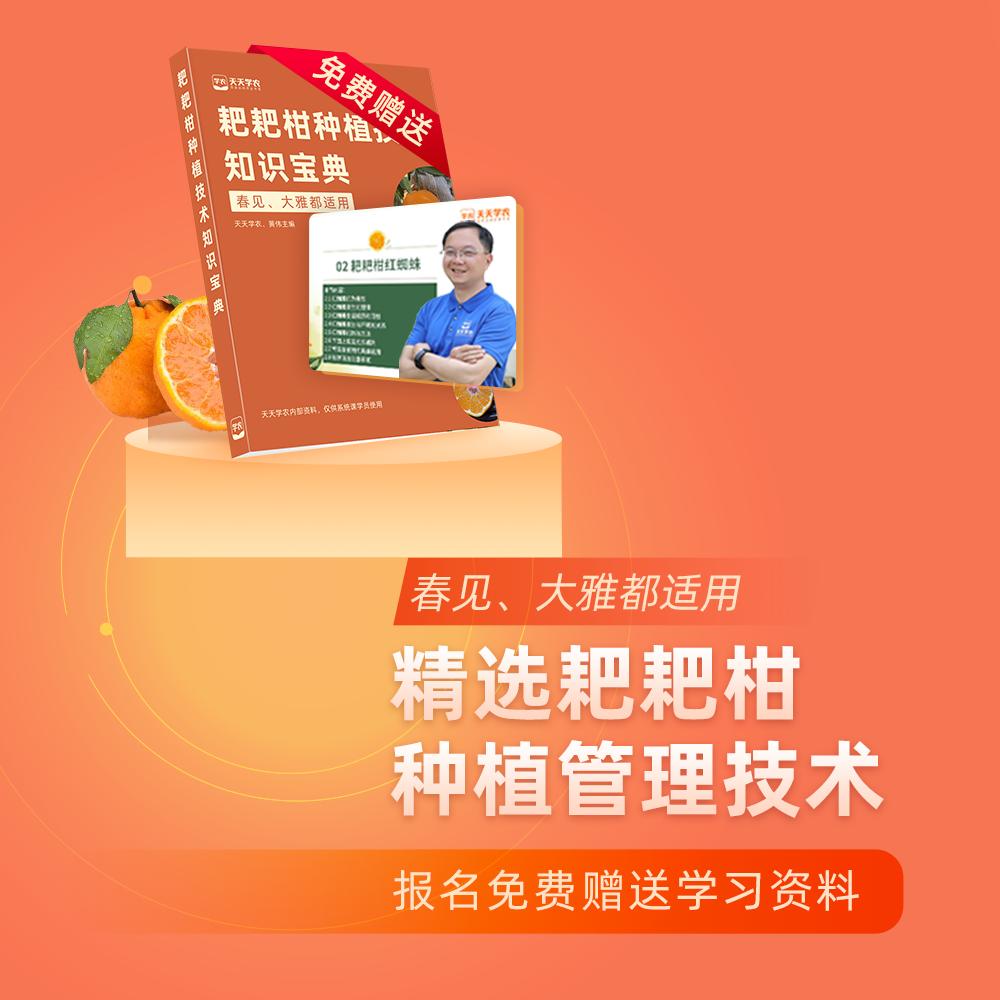 【天天学农】精选耙耙柑种植管理技术方案 1*1套*1套