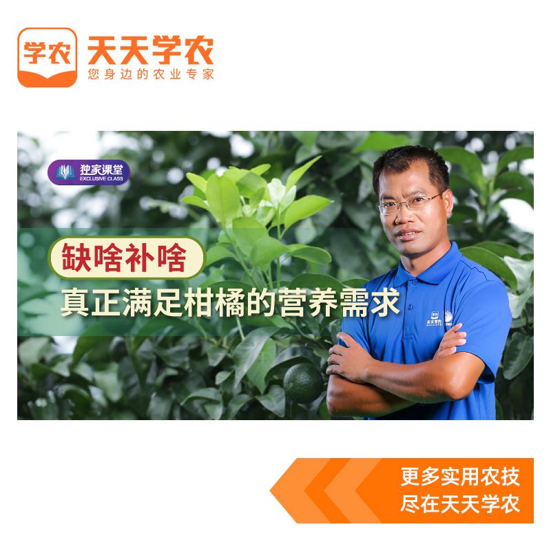 【天天学农】柑橘不同时期施肥方案 1*1套*1套