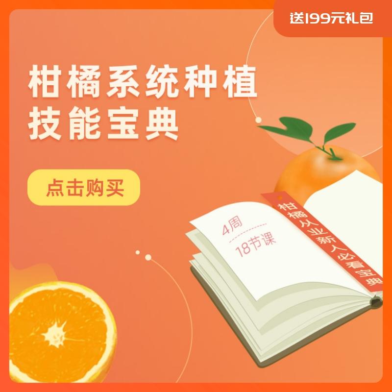 【天天学农】柑橘系统种植技能宝典 1*1套*1套