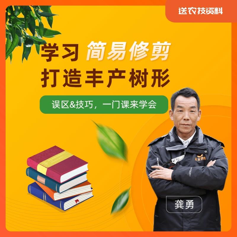 【天天学农-柑橘修剪】简易修剪 丰产树形套餐 1*1套*1套