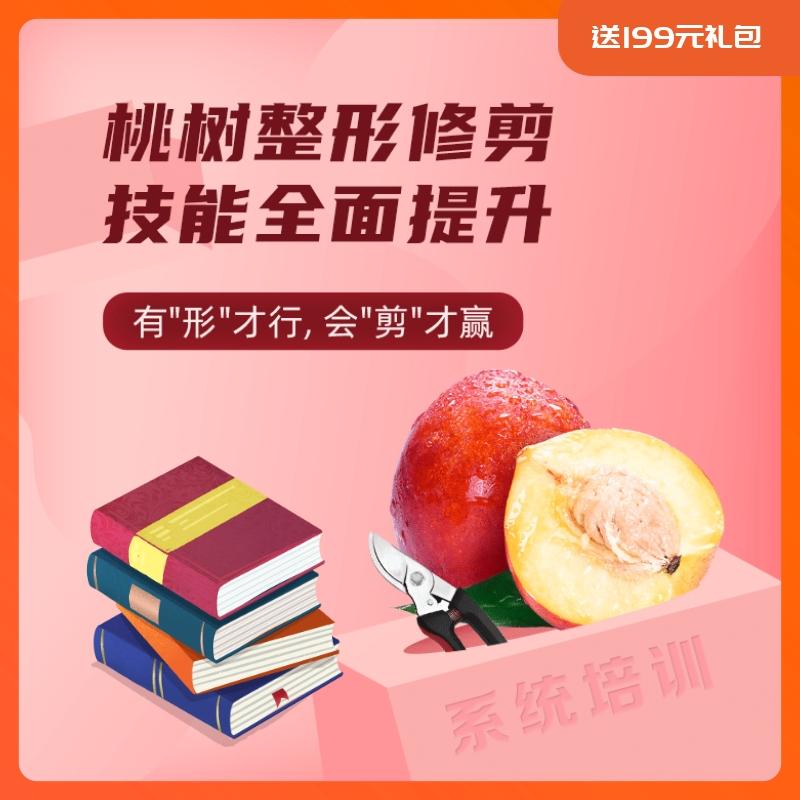 【天天学农】桃树整形修剪基础技术要领 1*1套*1套