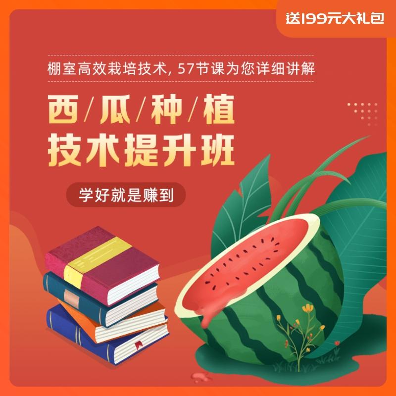 【天天学农】西瓜种植技术提升秘籍 1*1套*1套