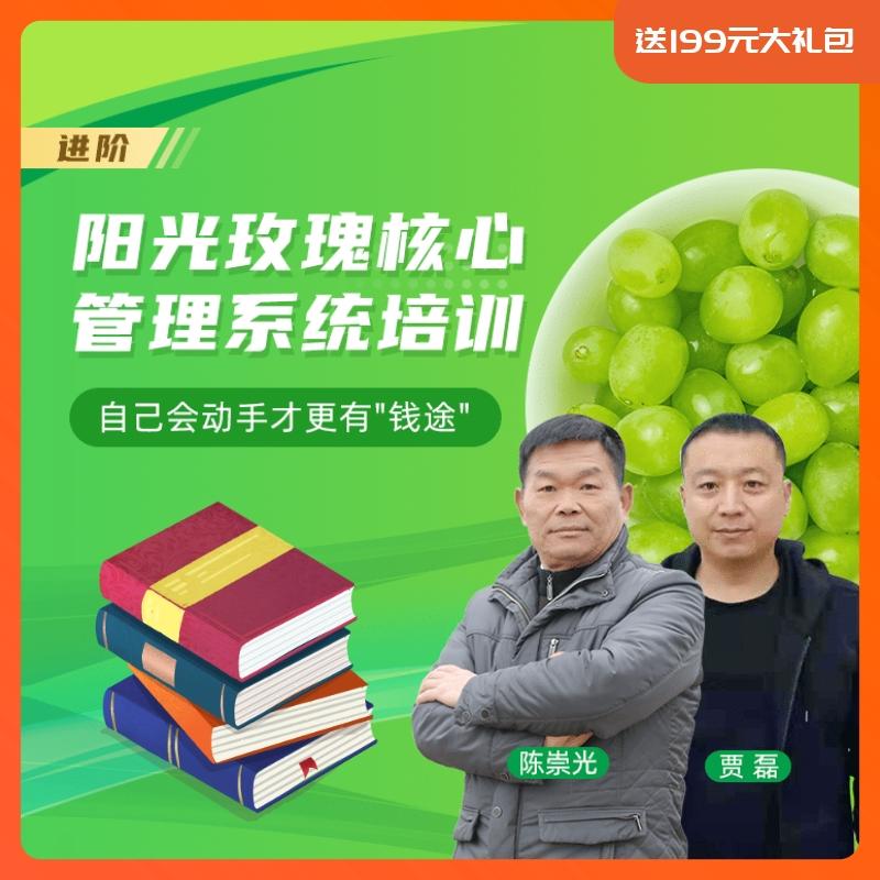 【天天学农】阳光玫瑰核心种植管理方案 1*1套*1套