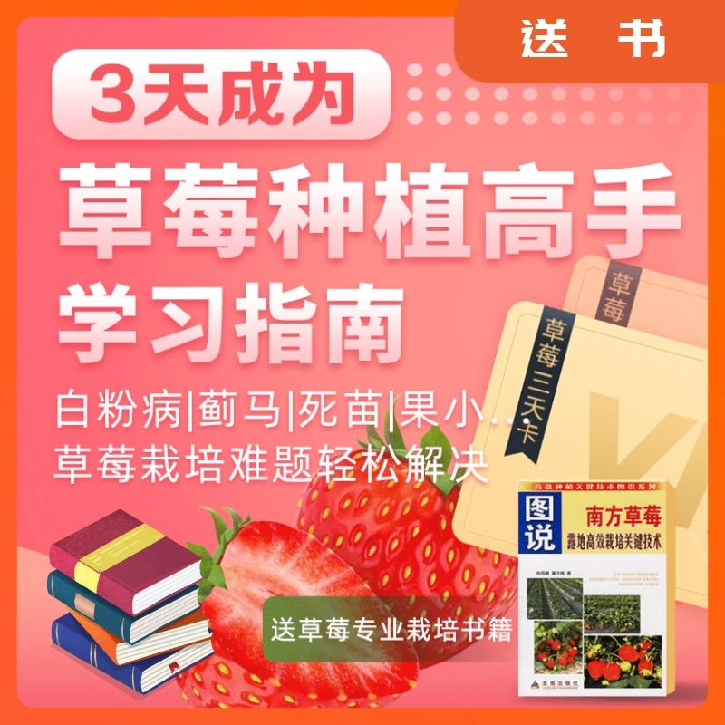 【天天学农】3天成为草莓种植高手学习指南 1*1套*1套