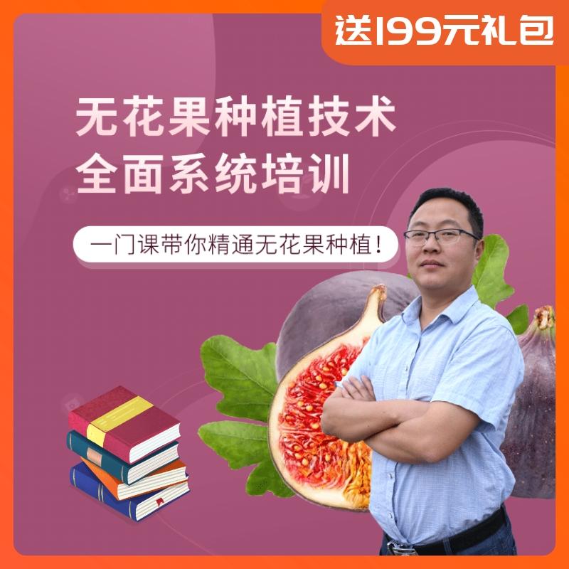 【天天学农】无花果系统种植技能宝典 1*1套*1套
