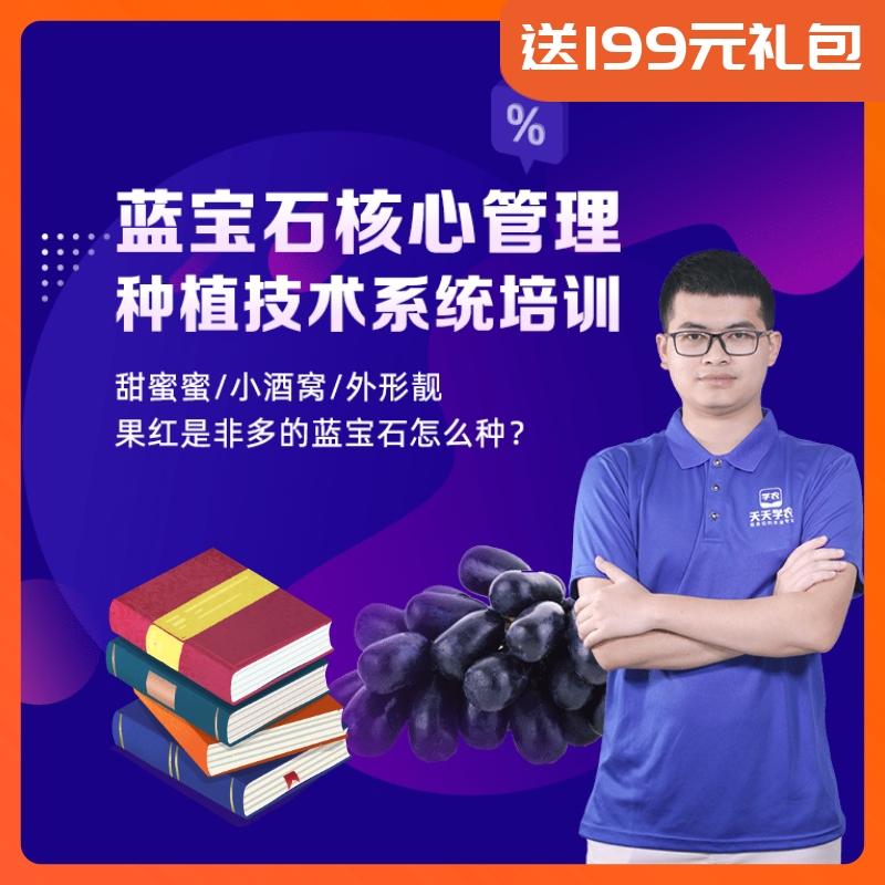 【天天学农】蓝宝石核心种植管理方案 1*1套*1套