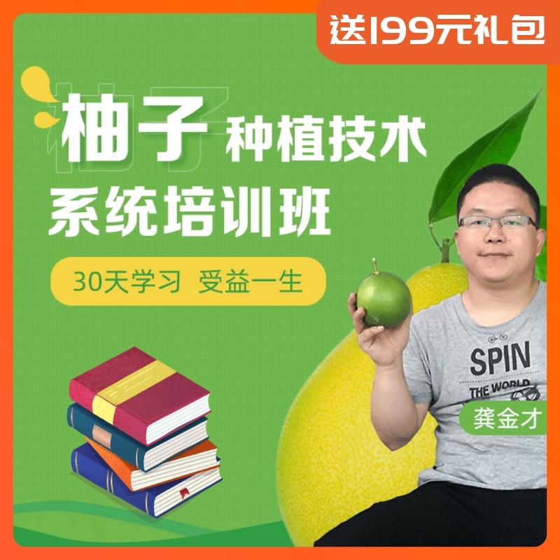 【天天学农】柚子系统种植技能宝典 1*1套*1套