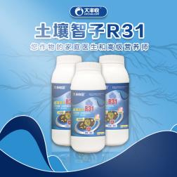 【丰创严选】土壤智子R31 30亿/毫升枯草芽孢杆菌水剂 1 1000ml*1瓶