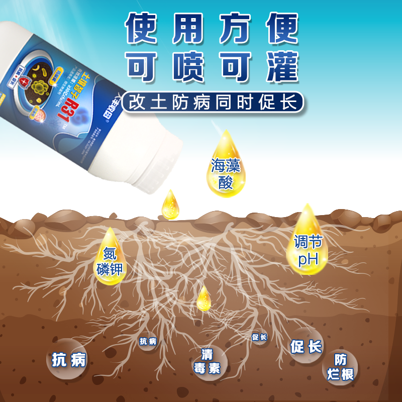 【丰创严选】土壤智子R31 30亿/毫升枯草芽孢杆菌水剂 1000ml*1瓶