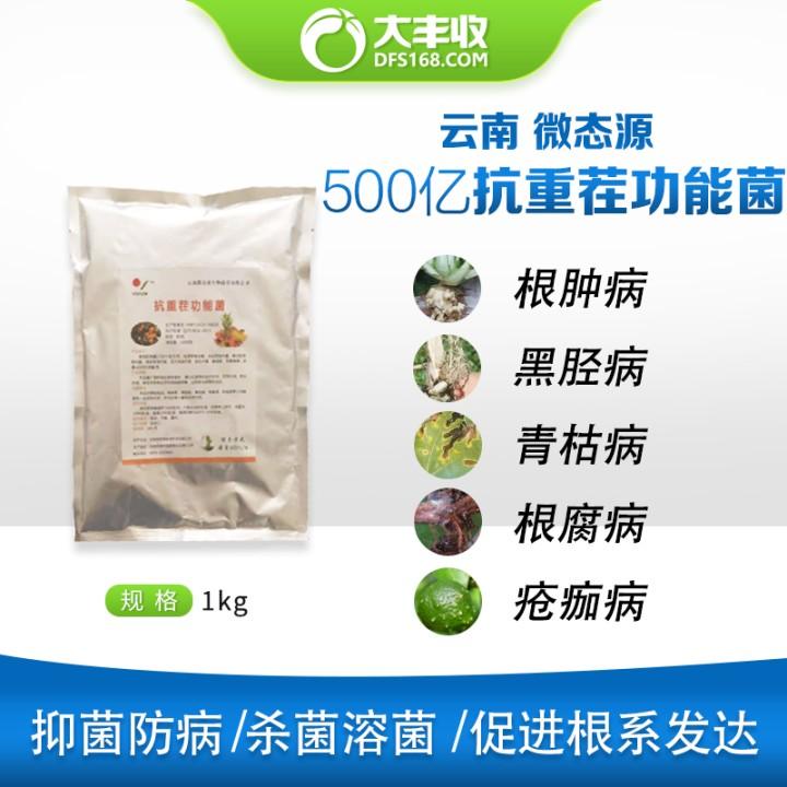 云南微态源500亿抗重茬功能菌 1kg 1000g*1包