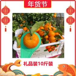 【年货节】直播扶贫助农:广西沙糖桔-礼品装10斤装 5kg*1Pcs
