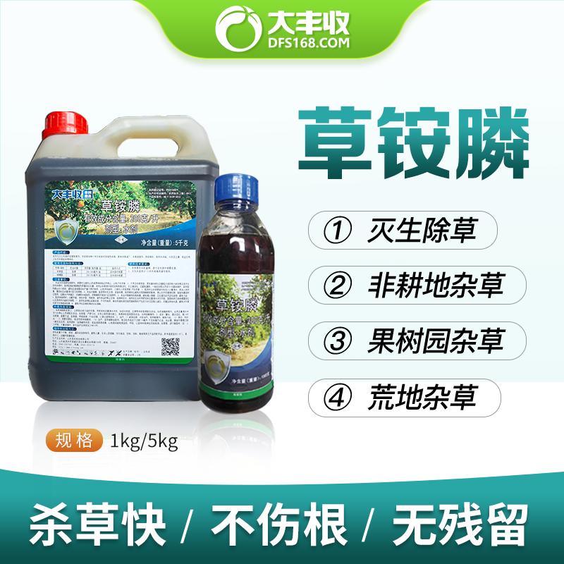 火日 200克/升草铵膦 水剂(BN) 5kg*1瓶
