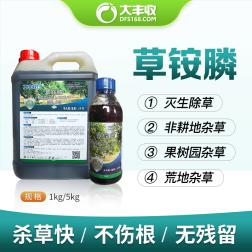 【丰创惠选】200克/升草铵膦水剂(BN) 1kg*1瓶