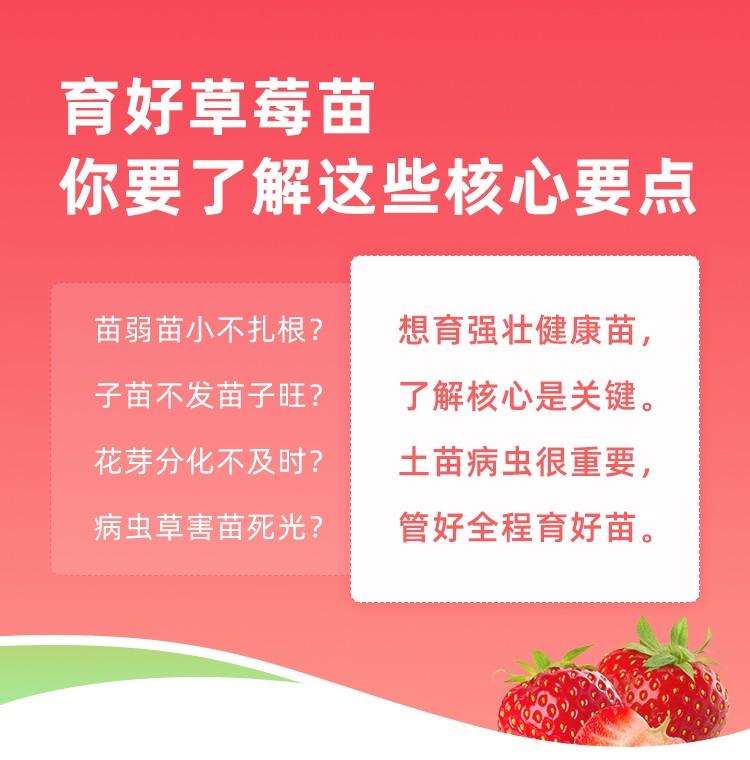 草莓控温控湿专业秘籍 1*1套*1套