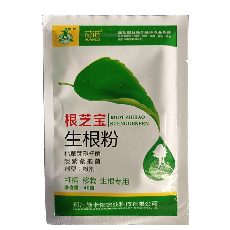 根芝宝 生根粉剂 40g 40g*1袋