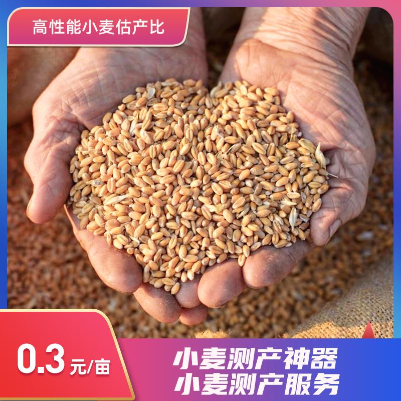 小麦测产服务 1次*1次