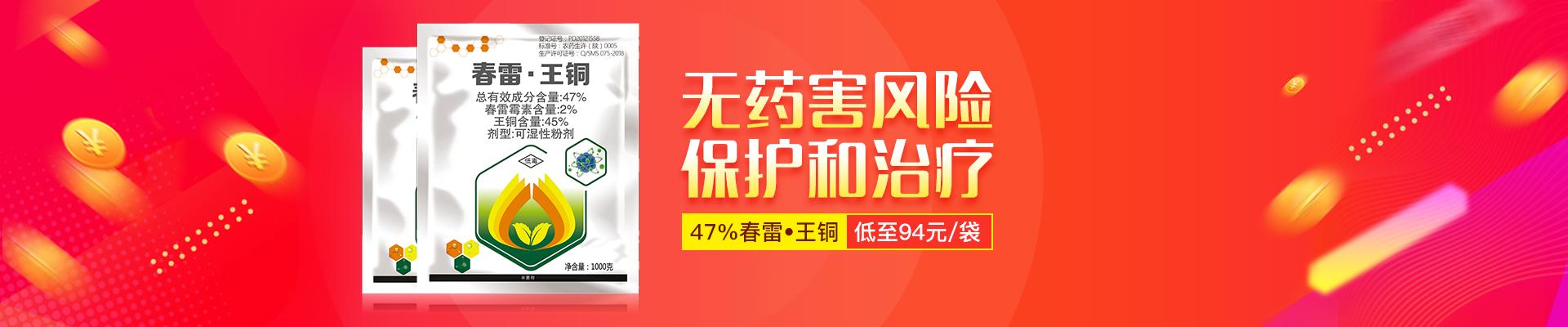 【1月】众筹-春雷王铜-PC轮播