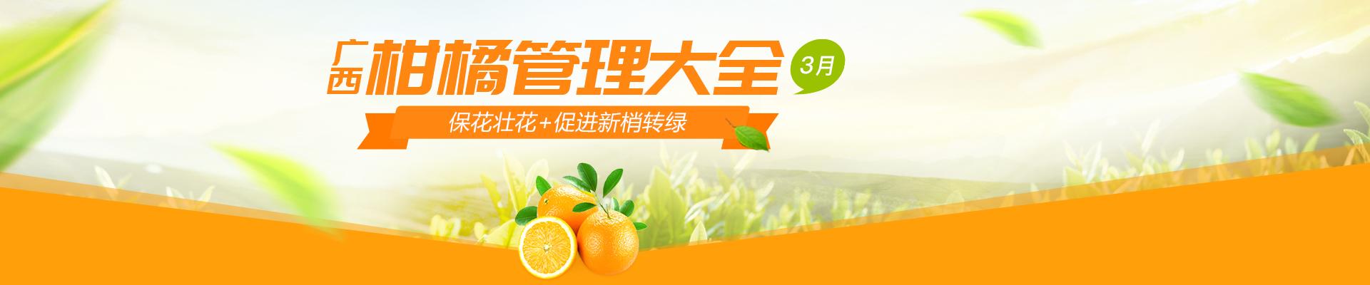 【3月】广西柑橘管理大全-PC轮播