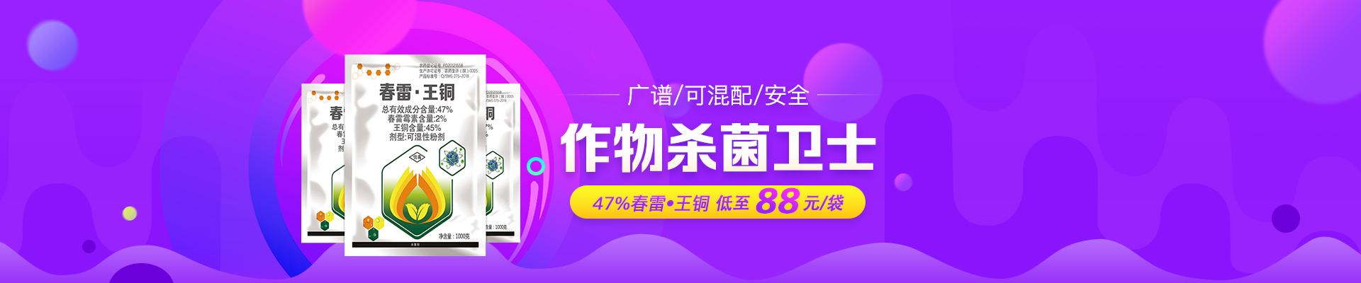 【5月】众筹-春雷王铜-PC-栏目-轮播