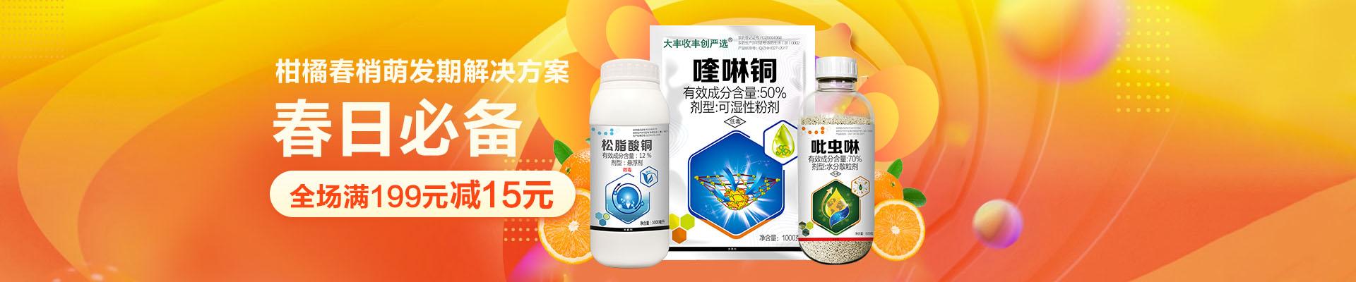 【2月】柑橘卖场
