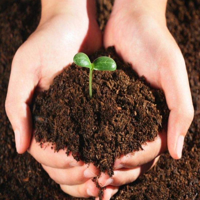 大丰收土壤检测服务套餐 1套*2次