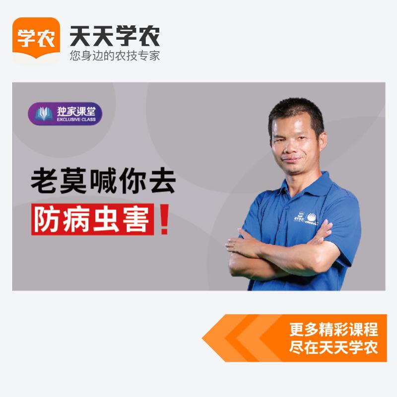 柑橘病虫害防治喷药(网上课程) 1套