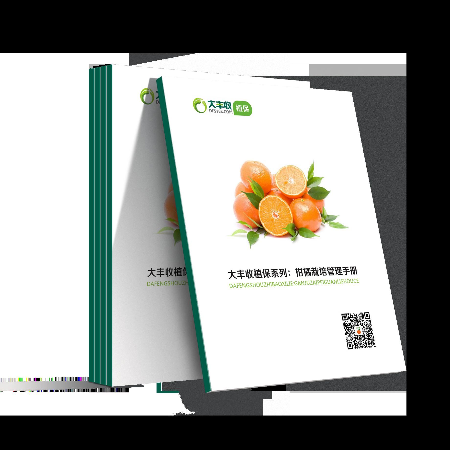 大丰收柑橘栽培管理手册 1本