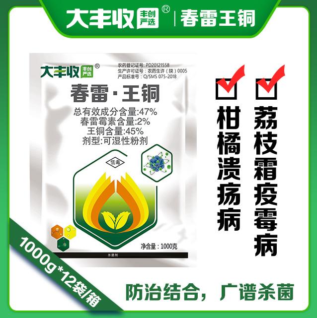 【丰创严选】47%春雷•王铜可湿性粉剂1000g 1000g*1袋