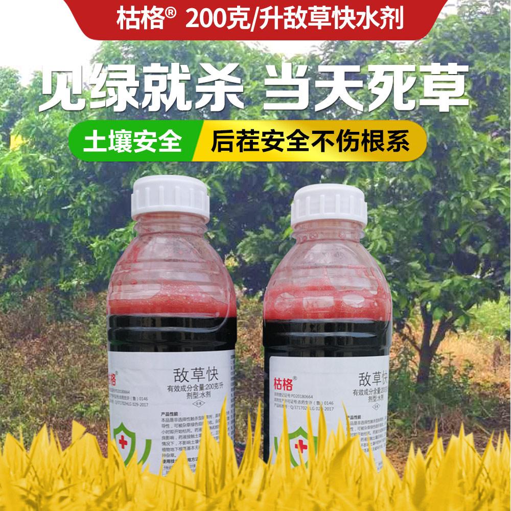 龙歌枯格200克/升敌草快水剂900g 900g*1瓶