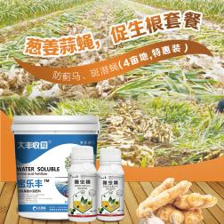 葱姜蒜防蓟马|斑潜蝇|促生根套餐(4亩地) 1套