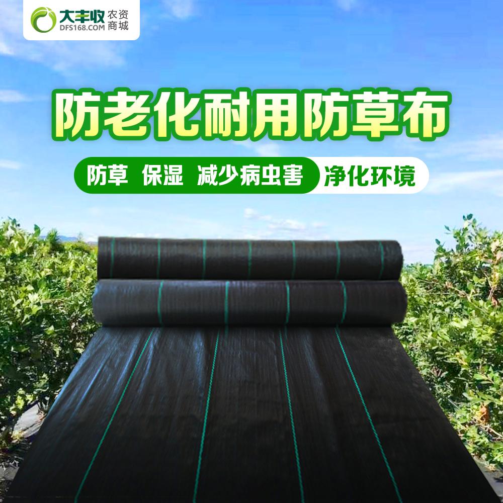 80g/㎡飞象®防老化耐用聚乙烯防草布 1m*400m*1卷