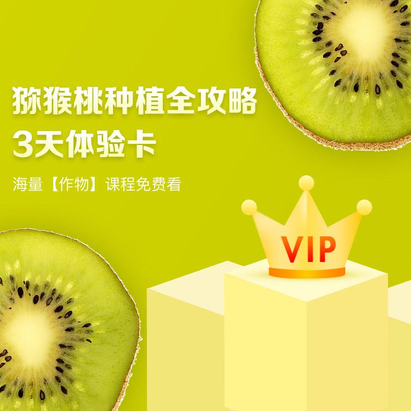 【天天学农】猕猴桃种植全攻略VIP会员3天体验学习卡 1张