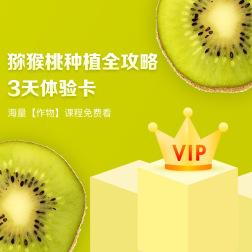猕猴桃种植全攻略VIP会员3天体验学习卡 1张