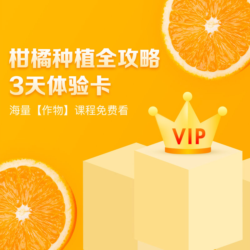 【天天学农】柑橘种植全攻略VIP会员3天体验学习卡 1张