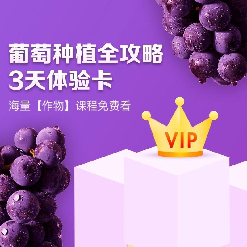【天天学农】葡萄种植全攻略VIP会员3天体验学习卡 1张