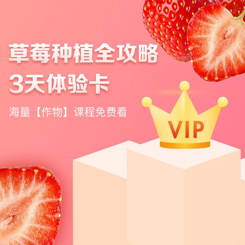【天天学农】草莓种植全攻略VIP会员3天体验学习卡 1张