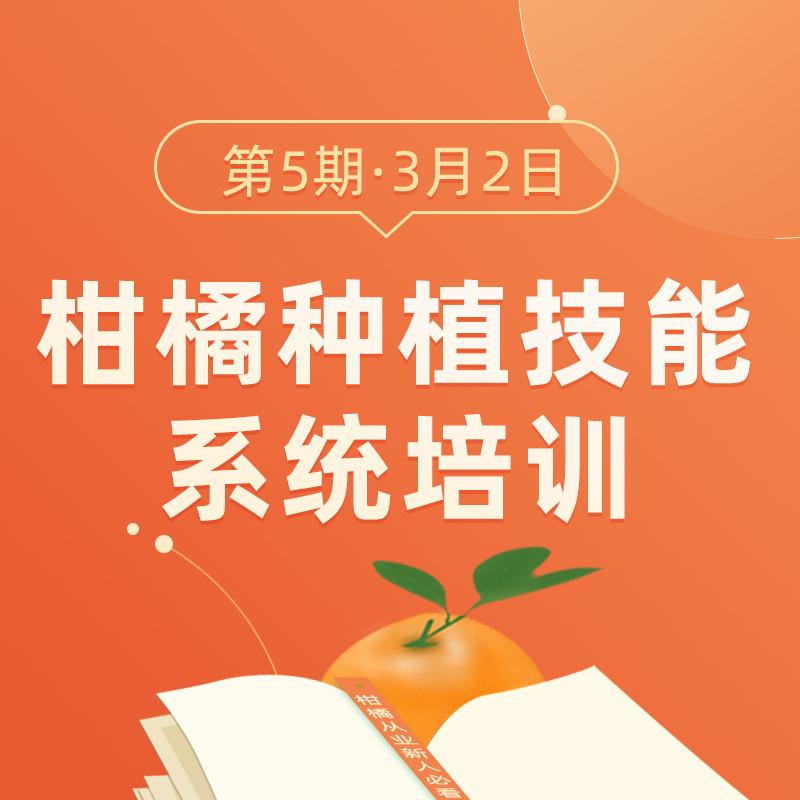 【天天学农】柑橘种植技能系统培训班 1*1套*1套