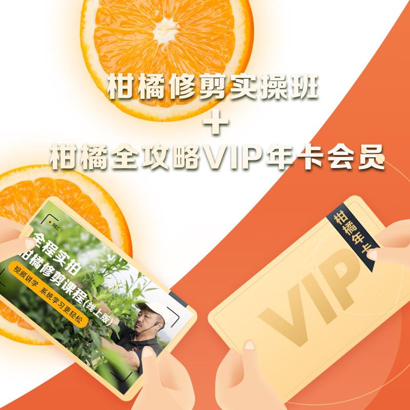 【天天学农】柑橘种植VIP会员年卡+线上修剪班套餐 1*1套*1套