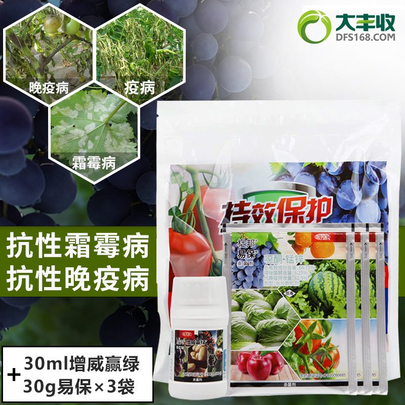 杜邦增威赢绿10%氟噻唑吡乙酮 可分散油悬浮剂 120g 120g*1袋