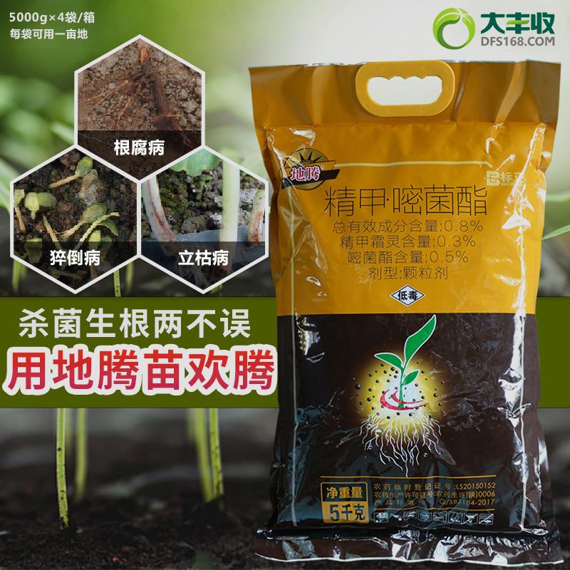 标正地腾0.8%精甲·嘧菌脂颗粒剂 5kg 5kg*1袋