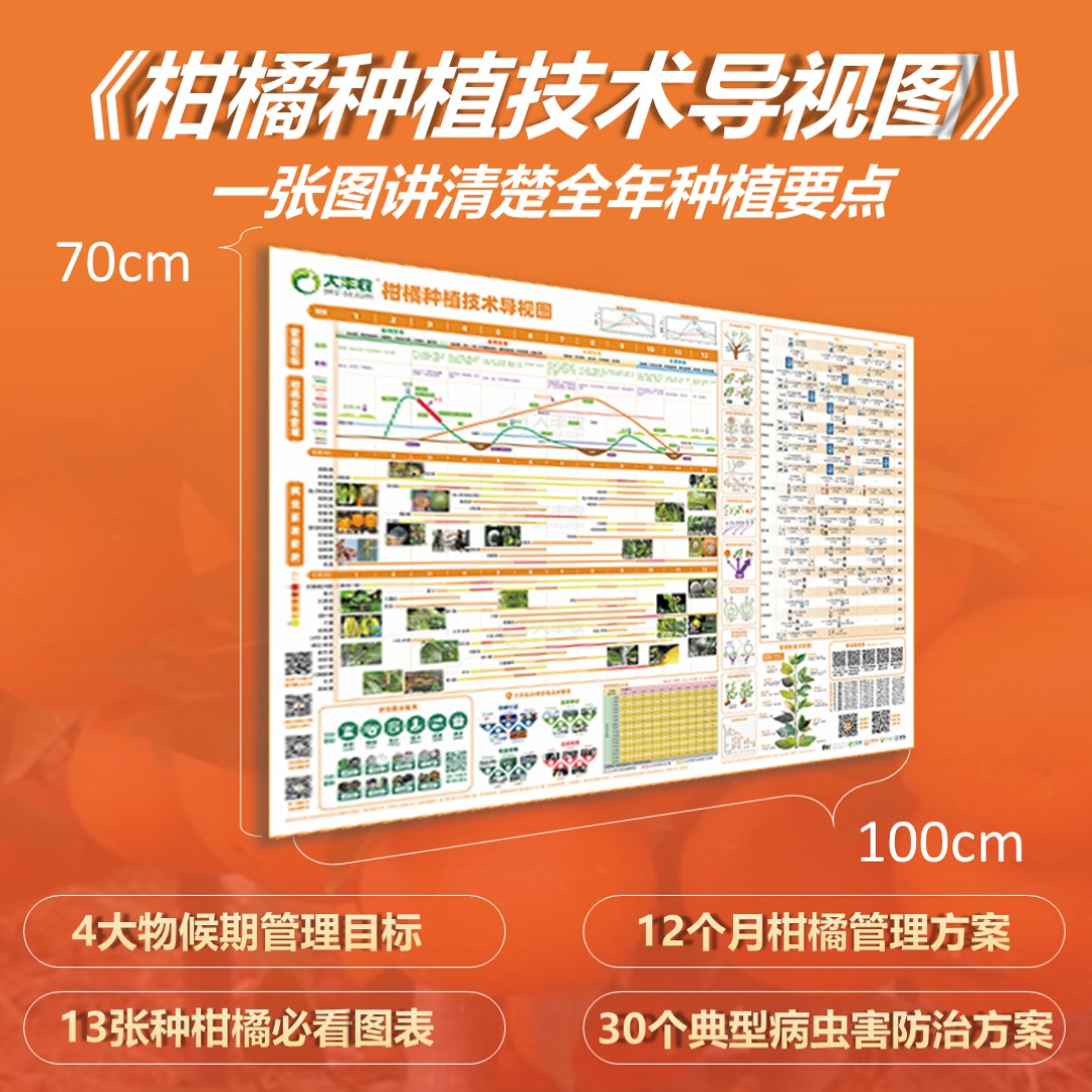 柑橘全年种植技术要点导视图 1套