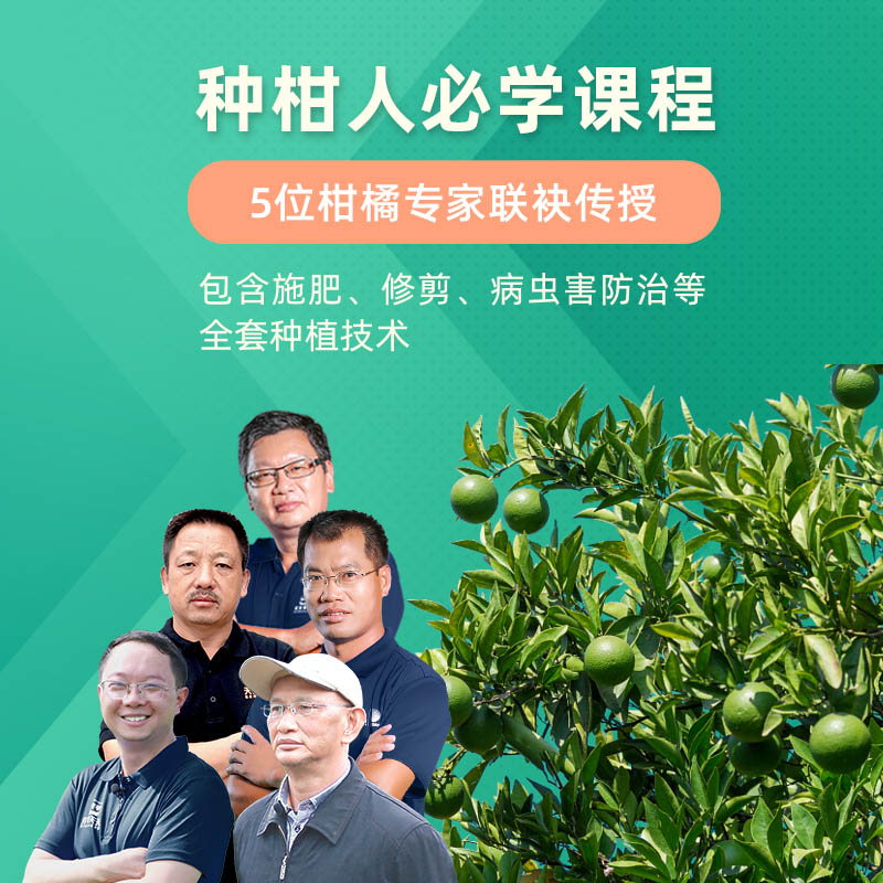 【种柑人必学课程】5位柑橘专家联袂传授 1Pcs