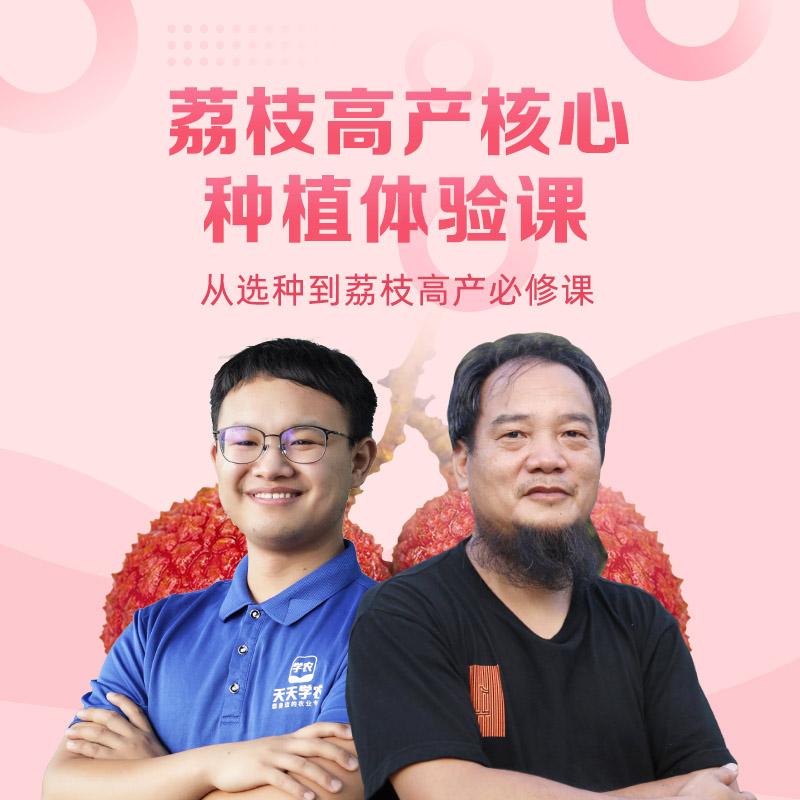 荔枝高产核心体验课 1Pcs